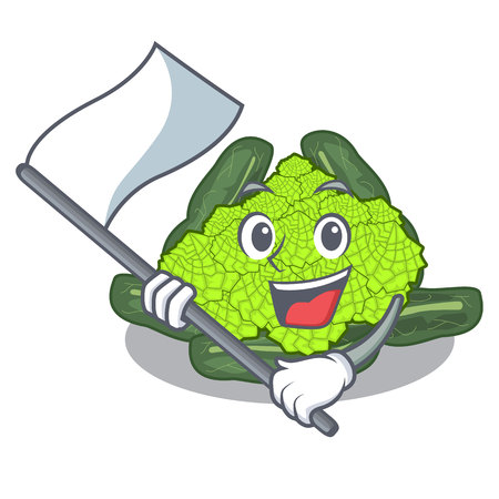 With flag roman cauliflower isolated on the mascot vector illustration Stock Illustratie