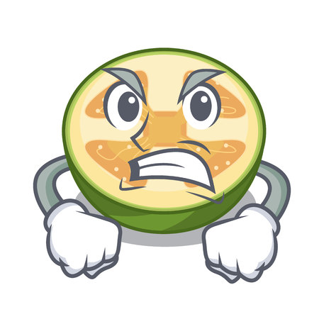 Angry feijoa fruit slices on cartoon plate vector illustration