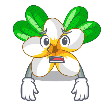 Afraid frangipani flower in the cartoon tree vector illustration