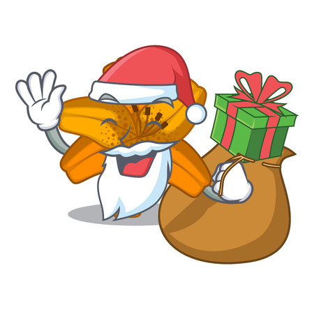 Santa with gift tiger lily flower isolated on mascot vector illustration Illustration