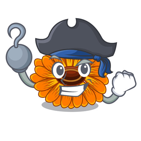 Pirate calendula flowers in the cartoon pots vector illustration