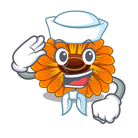 Sailor calendula flowers in the cartoon pots vector illustration