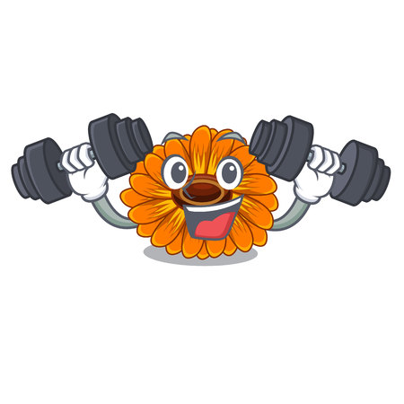Fitness calendula flowers in the cartoon pots vector illustration
