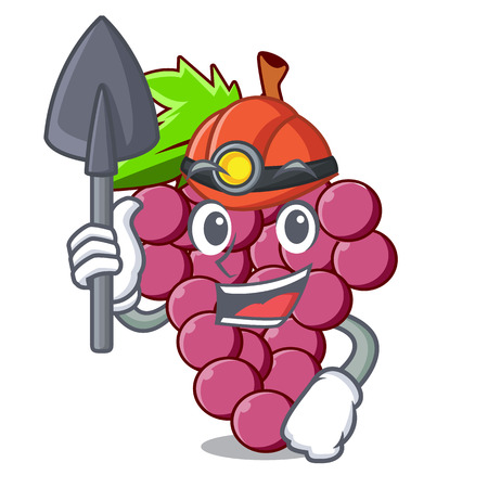 Miner red grapes fruit above mascot table vectoer illustration