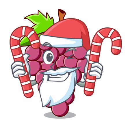 Santa with candy red grapes fruit in cartoon basket vector illustration