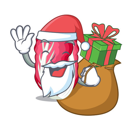 Santa with gift Vegetable radicchio isolated with the cartoons vector illustration