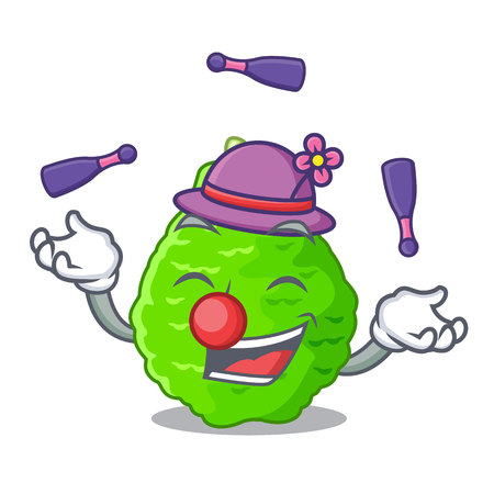 Juggling Lime kaffir is isolated with cartoons vector illustration