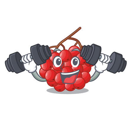 Fitness rowan berries fruit on cartoon wood vector illustration