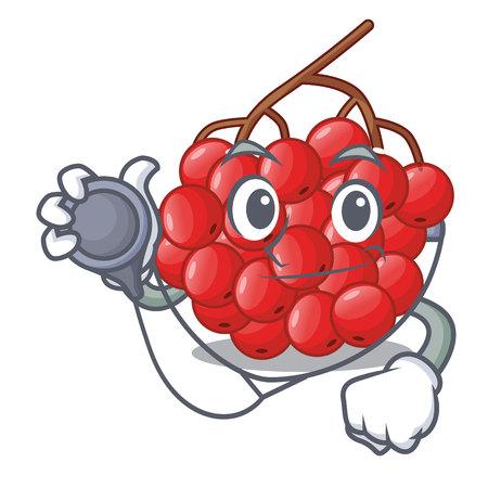 Doctor rowan berries fruit on cartoon wood vector illustration Illustration