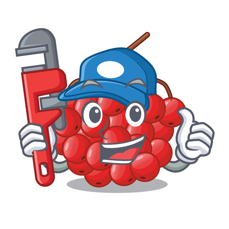 Plumber rowan berries isolated with the mascot vectorb illustration