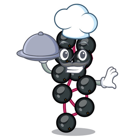 Chef with food elderberry in the shape of mascot vector illustration