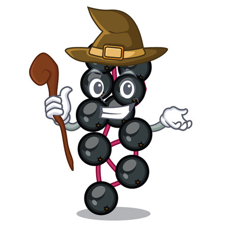 Witch elderberry in the shape of mascot vector illustration Illustration