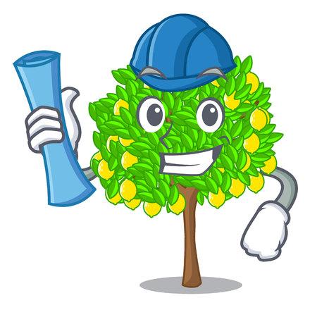 Architect lemon tree isolated with the mascot vector illustration