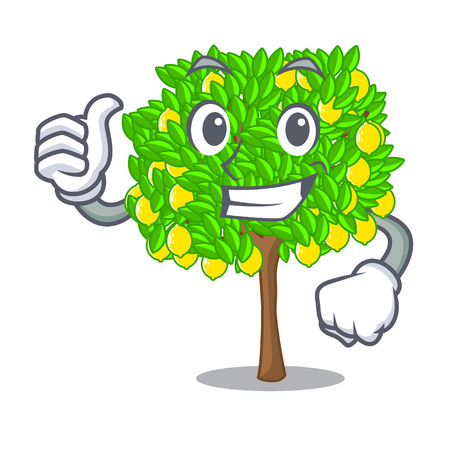 Thumbs up lemon tree isolated with the mascot vector illustration