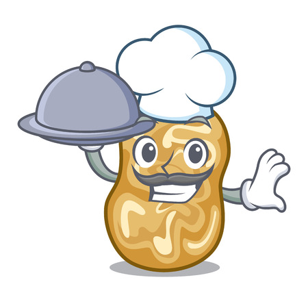 Chef with food raisins in the a character box vector illustration