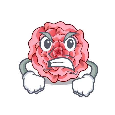 Angry carnations flower isolated with the cartoon vector illustration
