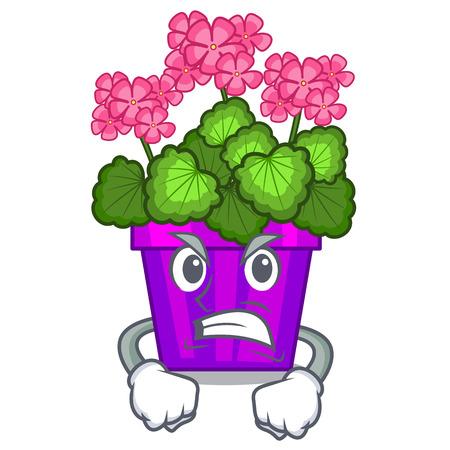 Angry geranium flowers in the cartoon pot vector illustration Illustration