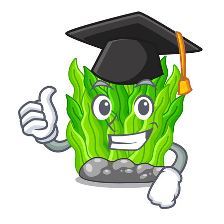 Graduation green seaweed isolated with the character