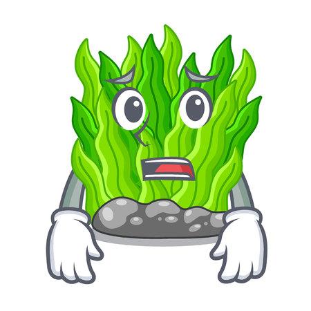 Afraid miniature green seaweed above mascot table