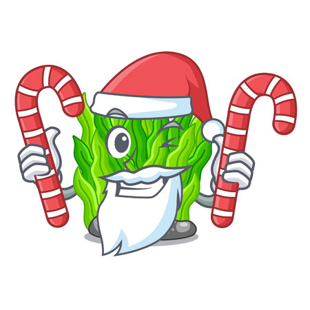 Santa with candy green seaweed in a cartoon aquarium