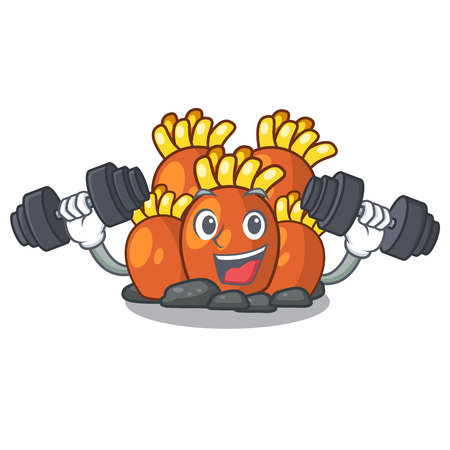 Fitness orange coral reef toys shape cartoon vector illustration