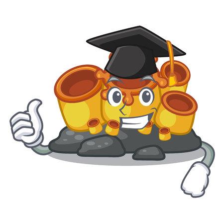 Graduation orange sponge coral isolated with cartoon vector illustration 向量圖像