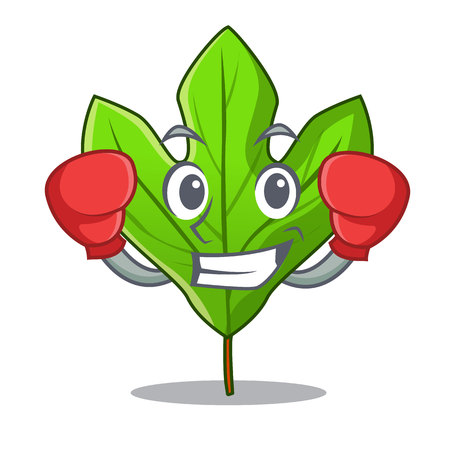 Boxing sassafras leaf isolated in the character vecttor illustration