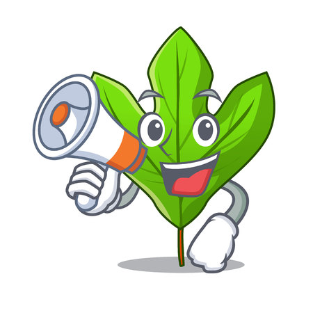 With megaphone sassafras leaf isolated in the character vecttor illustration