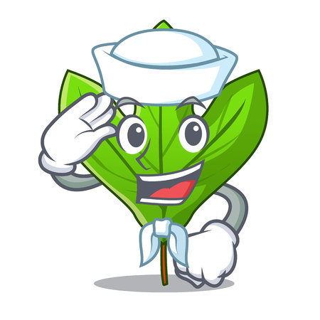 Sailor sassafras leaf isolated in the character vecttor illustration  イラスト・ベクター素材