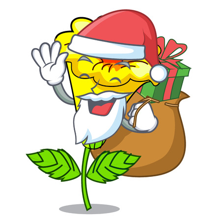 Santa with gift allamanda flower isolated in the mascot vector illustration