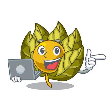 Avec des fruits physalis pour ordinateur portable dans une illustration vectorielle de dessin animé bol