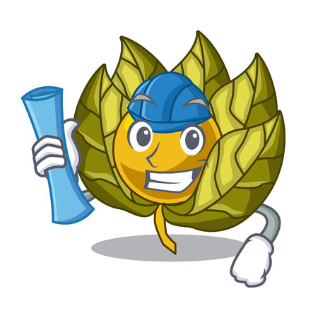 Architect physalis fruit in the mascot fridge vector illustration Illustration