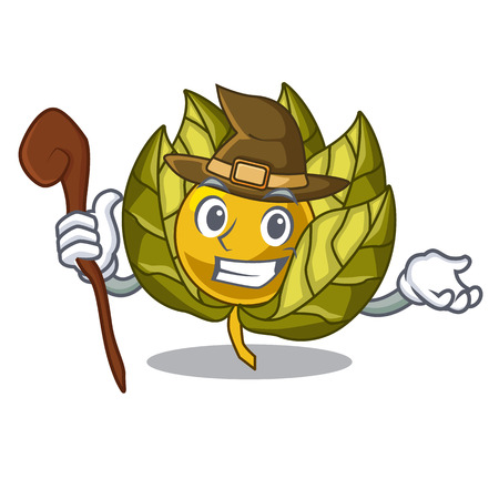 Witch physalis fruit isolated in the character vector illustration Illustration