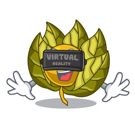 Virtual reality physalis fruit isolated in the character vector illustration