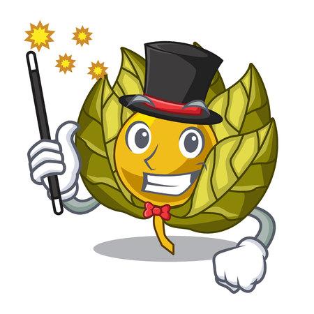 Magician physalis fruit in the cartoon shape vector illustration