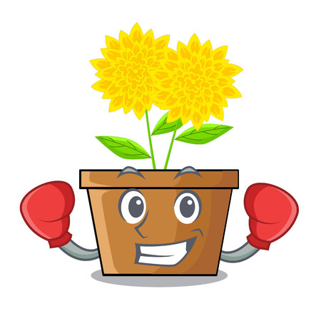 Boxing dahlia flower in the cartoon shape vector illustration