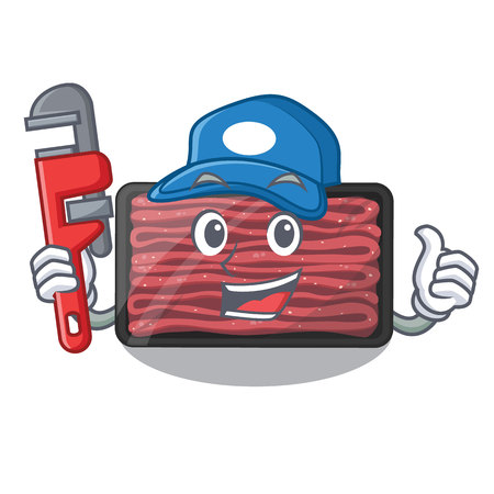 Plumber minced meat in the cartoon shape vector illustration