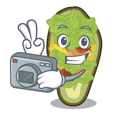 Photographer stuffed avocado on a character board vector illustration Banque d'images - 122477753