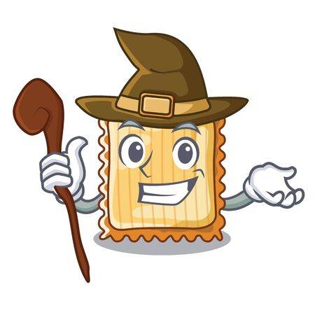 Witch lasagne is cooked in mascot oven