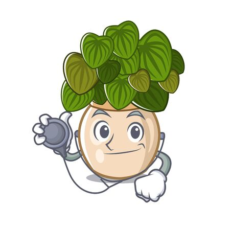 Doctor peperomia grows in a mascot pot vector illustration