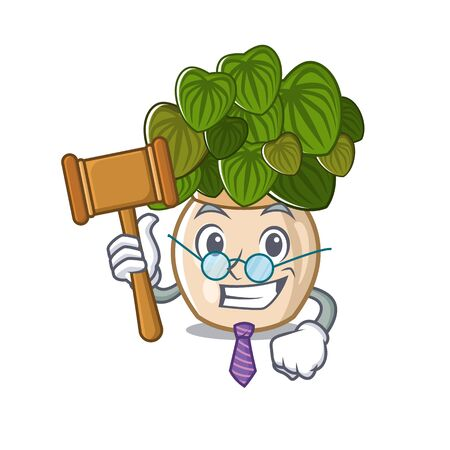 Judge peperomia with in the cartoon shape Illustration