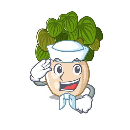 Sailor peperomia grows in a mascot pot vector illustration