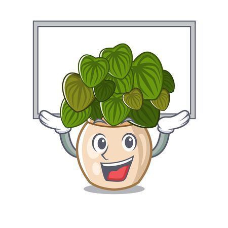 Up board peperomia grows in a mascot pot vector illustration
