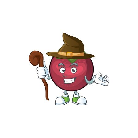 Witch mangosteen fruit cartoon character isolated on mascot vector illustration