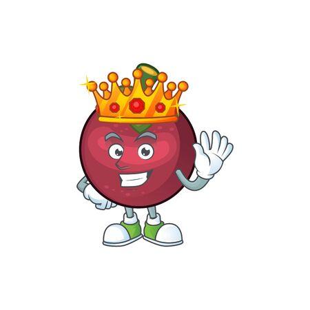 King cartoon mangosteen isolated on white background  イラスト・ベクター素材