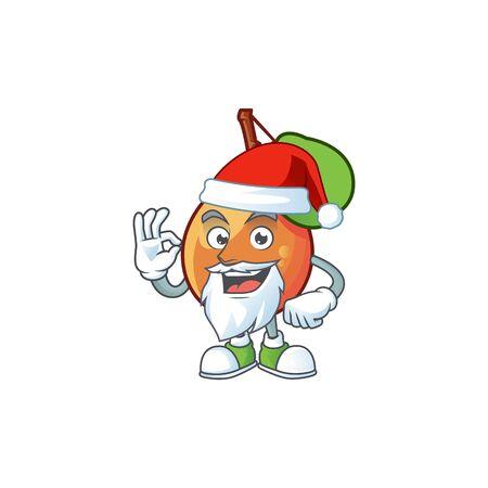Santa shipova fruit cartoon on white background