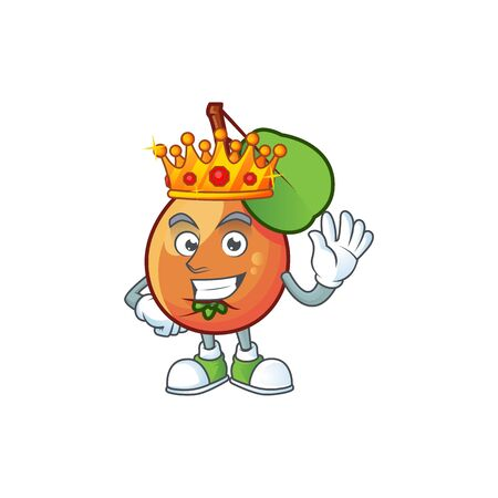 King shipova fruit cartoon on white background vector illustration