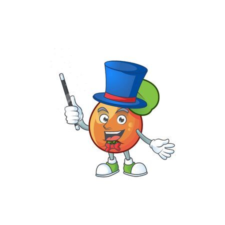 Magician shipova fruit cartoon on white background