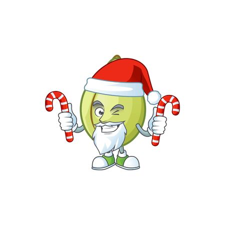 Santa with candy fresh gubinge cartoon character mascot style. vector illustration