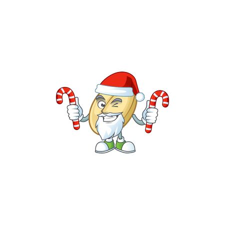 Split bean Cartoon character in Santa Claus with candy. Vector illustration